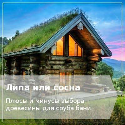 Баня из бревна