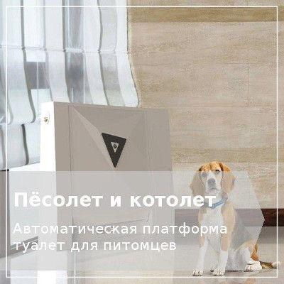 Домашний туалет для собак